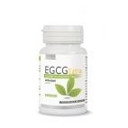 EGCG Extra Extrakt zo zeleného čaju 60 kapsúl